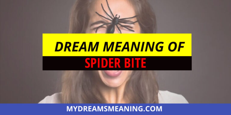 Dream Meaning Of Spider Bite