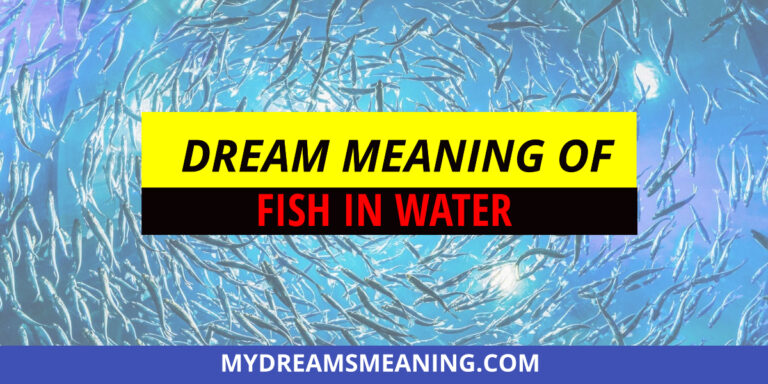 Dream Meaning of Fish in Water Fish Dream Meaning