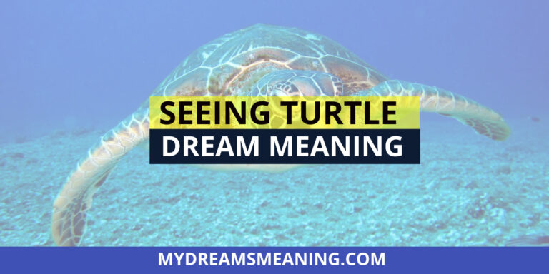 Seeing Turtle In Dream Meaning