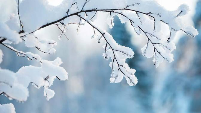 snow dream meaning